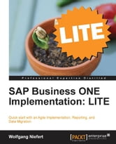 SAP Business ONE Implementation: LITE ebook by Wolfgang Niefert