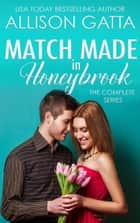 A Match Made in Honeybrook ebook by Allison Gatta