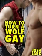 How to Turn a Wolf Gay ebook by Josh Lark