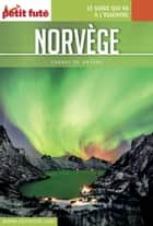 NORVÈGE 2017 Carnet Petit Futé ebook by Dominique Auzias, Jean-Paul Labourdette