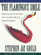 The Flamingo's Smile: Reflections in Natural History ebook by Stephen Jay Gould