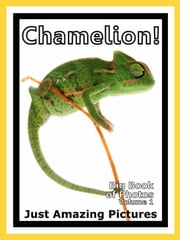 Just Chamelion Lizard Photos! Big Book of Photographs & Pictures of Chamelions Lizards, Vol. 1 ebook by Big Book of Photos