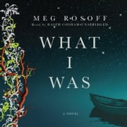 What I Was audiobook by Meg Rosoff