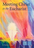 Meeting Christ in the Eucharist ebook by Fr Stephen Wang