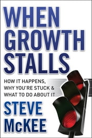 When Growth Stalls - How It Happens, Why You're Stuck, and What to Do About It ebook by Steve McKee