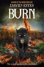 Burn ebook by David Estes