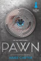 Pawn ebook by Aimée Carter