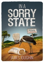 In A Sorry State ebook by James Joughin
