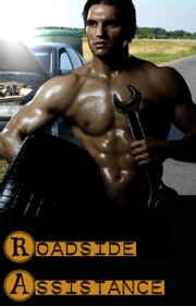 Roadside Assistance ebook by DC James