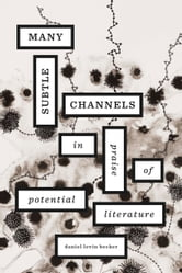Many Subtle Channels - In Praise of Potential Literature ebook by Daniel Levin Becker
