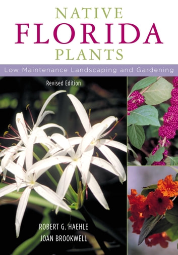 Native Florida Plants - Low Maintenance Landscaping and Gardening ebook by Robert G. Haehle,Joan Brookwell