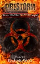 Firestorm - Book 3 of the Wildfire Saga ebook by