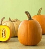 Growing Pumpkins For Beginners ebook by Dave Houston
