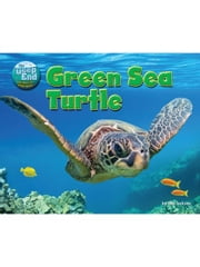 Green Sea Turtle ebook by Jackson, Tom
