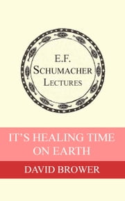 It's Healing Time on Earth ebook de David Brower,Hildegarde Hannum