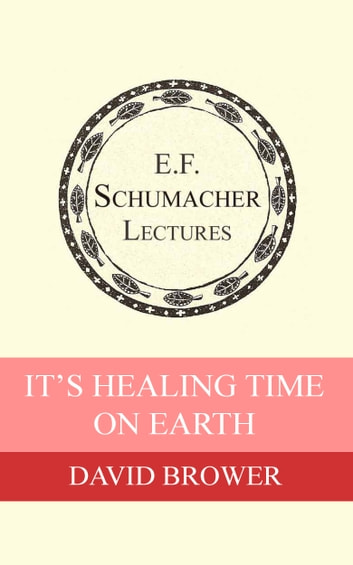 It's Healing Time on Earth ebook by David Brower,Hildegarde Hannum