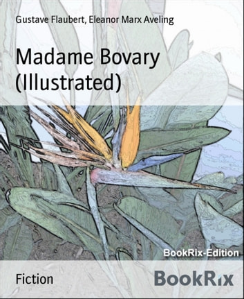 madame bovary tone and authors point of view by gustave flaubert Madame bovary, gustave flaubert madame bovary is the debut novel of french writer gustave flaubert, published in 1856 the story focuses on a doctor's wife, emma bovary, who has adulterous affairs and lives beyond her means in order to escape the banalities and emptiness of provincial life.