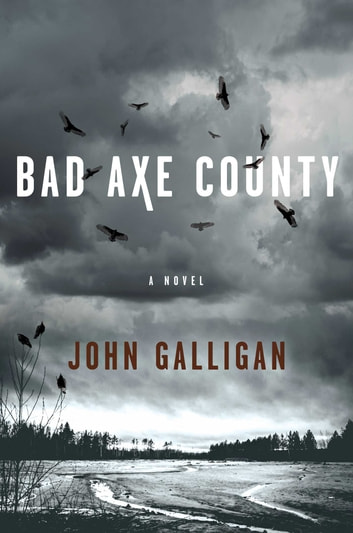 Bad Axe County - A Novel ebook by John Galligan
