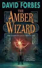 The Amber Wizard ebook by David Forbes