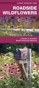 Roadside Wildflowers - A Folding Pocket Guide to Familiar North American Species ebook by James Kavanagh,Raymond Leung