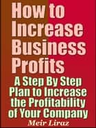 How to Increase Business Profits: A Step By Step Plan to Increase the Profitability of Your Company ebook by Meir Liraz