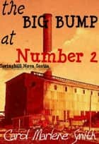 the BIG BUMP at Number 2 ebook by Carol Marlene Smith