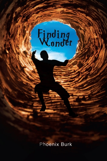 Finding Wonder ebook by Phoenix Burk
