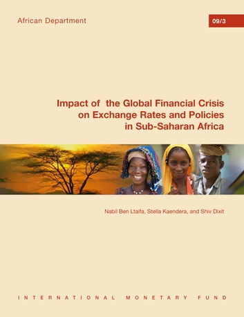 Impact of the Global Financial Crisis on Exchange Rates and Policies in Sub-Saharan Africa ebook by Stella Kaendera,S. V. S. Dixit,Nabil  Ben Ltaifa