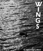 Wings ebook by Alexander S. Bauer