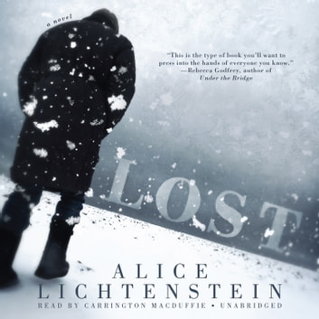 Lost - A Novel audiobook by Alice Lichtenstein