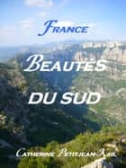 SUD DE LA FRANCE ebook by Catherine Kail