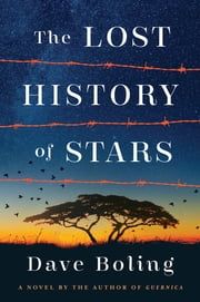 The Lost History of Stars - A Novel By The Author Of Guernica ebook by Dave Boling
