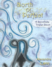 North Of Perfect (Tales of North #1 ~ A Snowflake Triplet Short) ebook by Alexandra Lanc