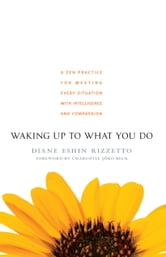 Waking Up to What You Do - A Zen Practice for Meeting Every Situation with Intelligence and Compassion ebook by Diane Eshin Rizzetto