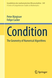 Condition - The Geometry of Numerical Algorithms ebook by Peter Bürgisser,Felipe Cucker