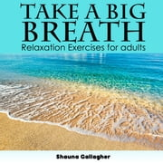 Take A Big Breath For Adults audiobook by Shauna Gallagher