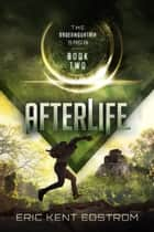 Afterlife ebook by Eric Kent Edstrom