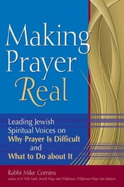 Making Prayer Real - Leading Jewish Spiritual Voices on Why Prayer Is Difficult and What to Do about It ebook by Mike Comins