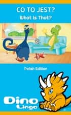 Co To Jest? ebook by Dino Lingo