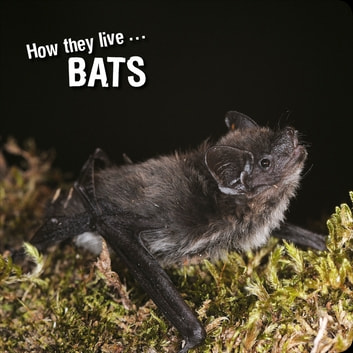 How they live... Bats - Learn All There Is to Know About These Animals! ebook by Ivan Esenko,David Withrington