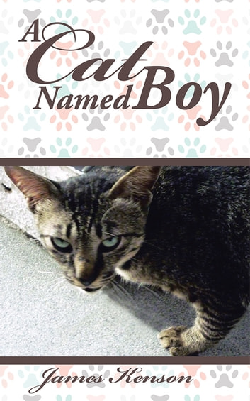 A Cat Named Boy ebook by James Kenson