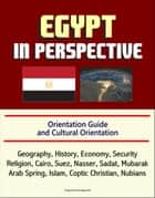 Egypt in Perspective: Orientation Guide and Cultural Orientation: Geography, History, Economy, Security, Religion, Cairo, Suez, Nasser, Sadat, Mubarak, Arab Spring, Islam, Coptic Christian, Nubians ebook by Progressive Management