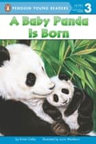 A Baby Panda Is Born eBook by Kristin Ostby, Lucia Washburn, Avery Briggs