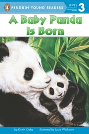A Baby Panda Is Born ebook by Kristin Ostby,Lucia Washburn,Avery Briggs