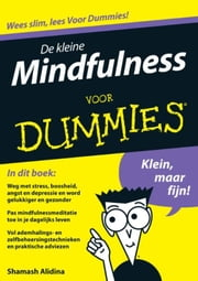 De kleine mindfulness voor Dummies ebook by Shamash Alidina