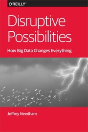 Disruptive Possibilities: How Big Data Changes Everything ebook by Jeffrey Needham