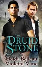 The Druid Stone ebook by Heidi Belleau,Violetta Vane