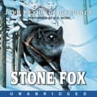 Stone Fox audiobook by B.D. Wong, John Reynolds Gardiner