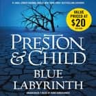 Blue Labyrinth audiobook by Douglas Preston, Lincoln Child