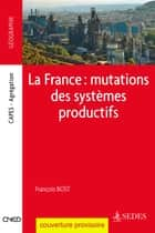 La France : mutations des systèmes productifs ebook by François Bost